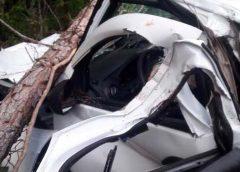 Crianças morrem e adultos ficam feridos em acidente na Bahia; veículo ficou destruído